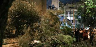 Δέντρο καταπλάκωσε περαστικό στο Χαλάνδρι